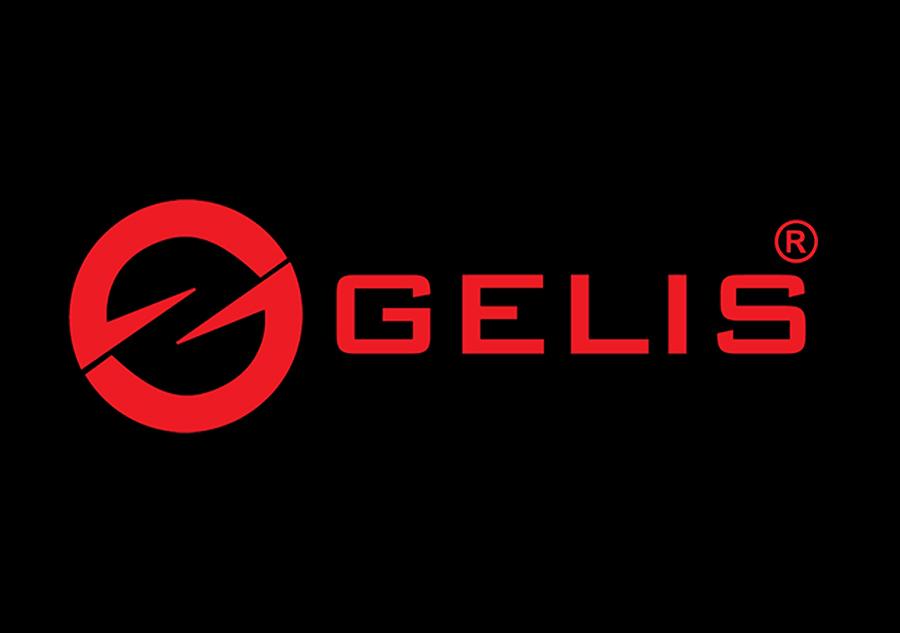18. Logo Gelis