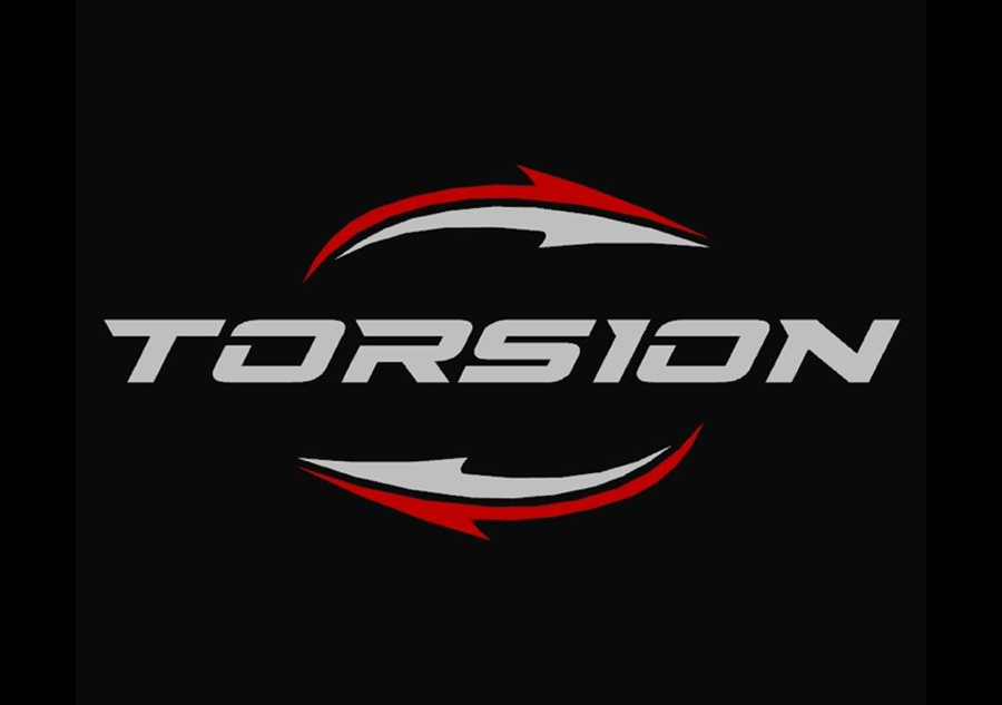 50. Logo Torsion